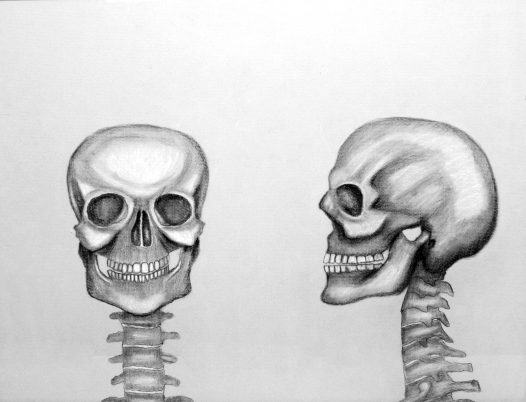 Smiling Skulls - charcoal on paper